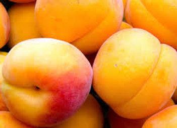 abricots Drôme)