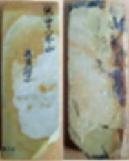 nakayama2_edited.jpg