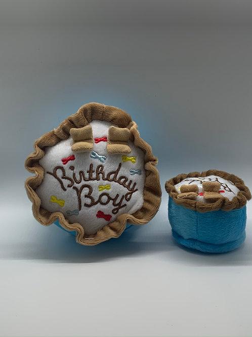 Birthday Boy-Small