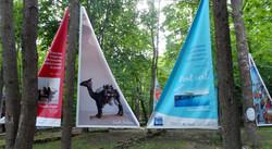 2017-expo traversée-4