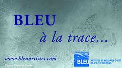 2011_Bleu_à_la_trace