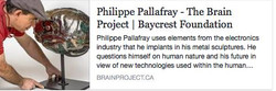 2017 Philippe Pallafray Cerveau