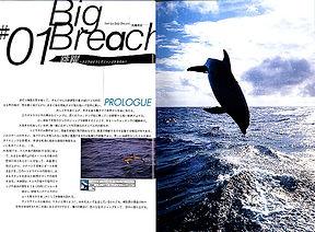 Flippers-05.jpg