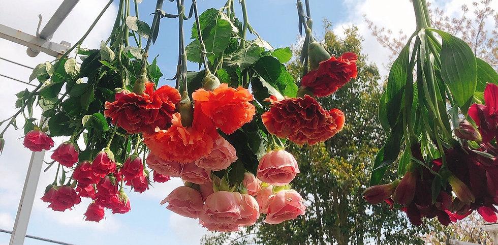 吊るした花3.jpg