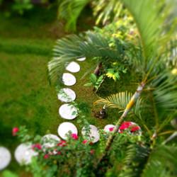 kubusai庭