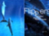 Flippers-01.jpg