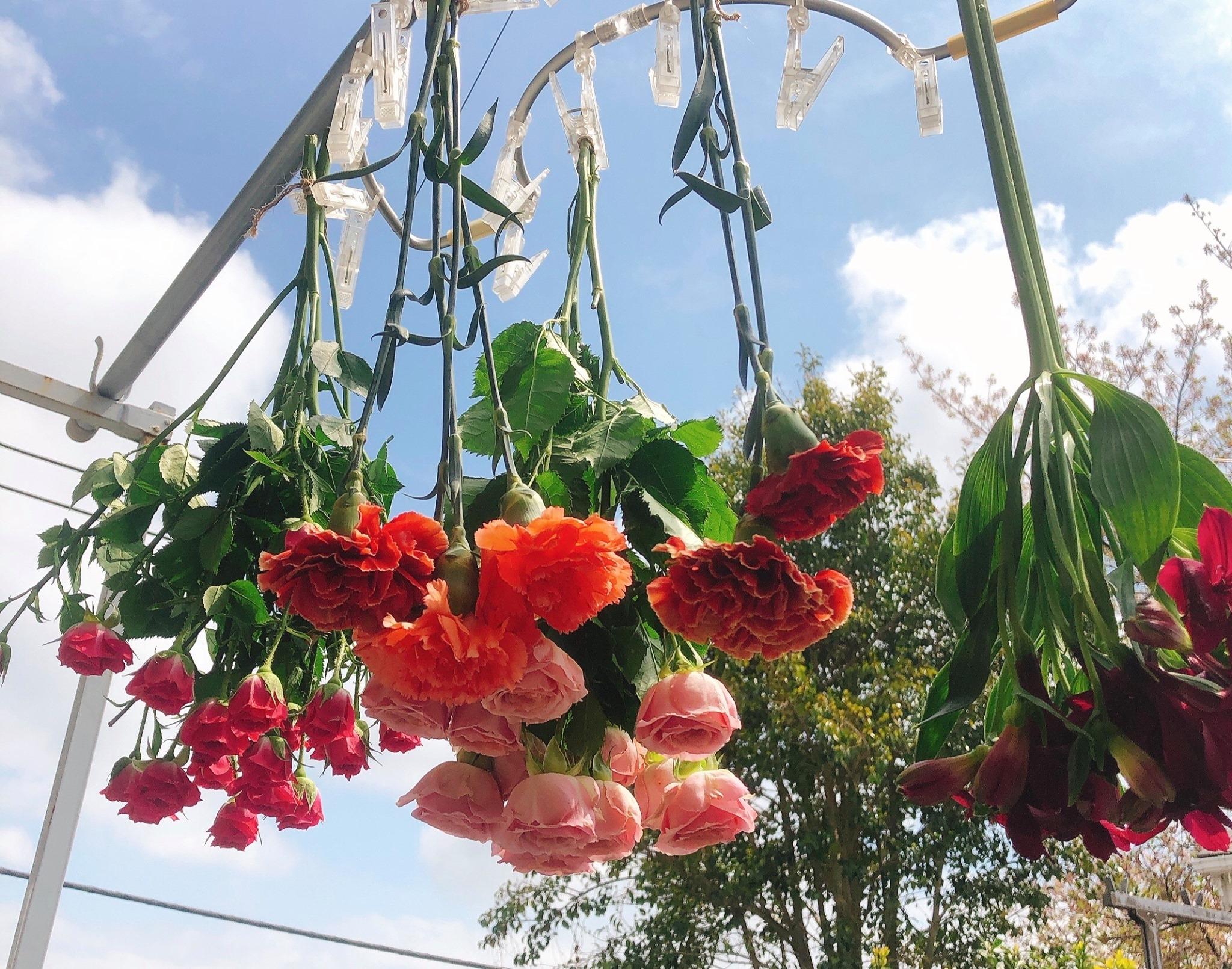 吊るした花