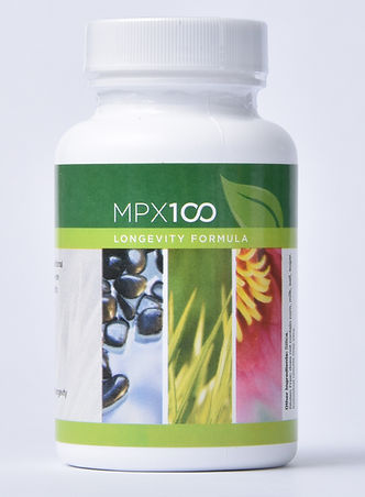 MPX100 front cropped.jpg
