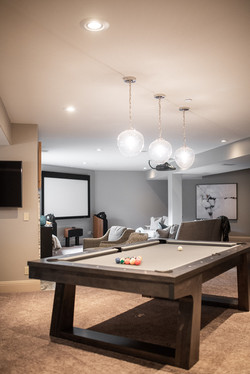 Project Meadow Place Contemporary - Entertainment Room View 1