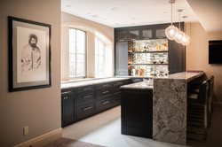 Project Meadow Place Contemporary - Wet Bar View 2