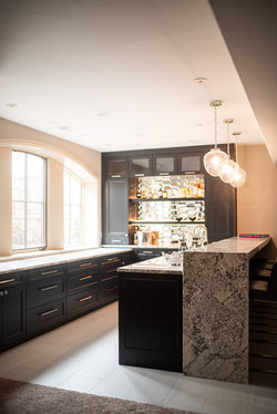 Project Meadow Place Contemporary - Wet Bar View 1