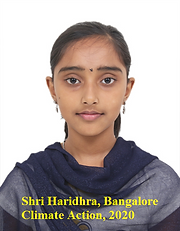 CA20P_Haridhra.png