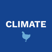 Poultry Climate