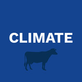Dairy Climate