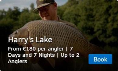 Harrys Lake Button.jpg