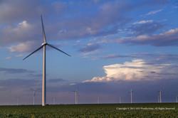 Dickens_2014-windfarm-c.jpg