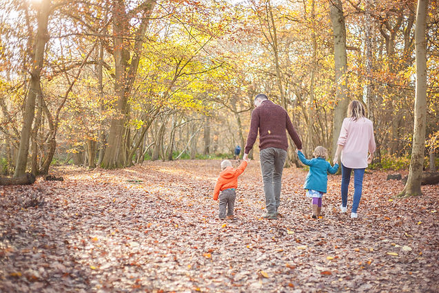 woodland autumn walk