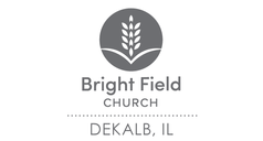 network_brightfield_web.png