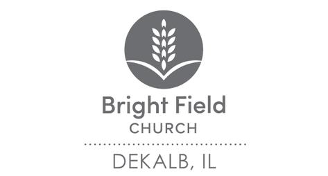 network_brightfield_web.png