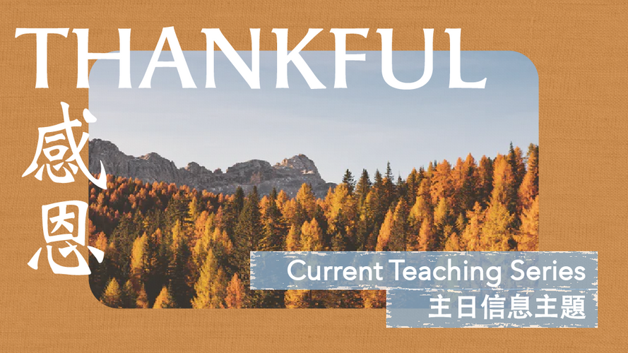 Thankful Website-04.png