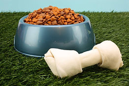 Dog food and other pet food suppliers in New Zealand
