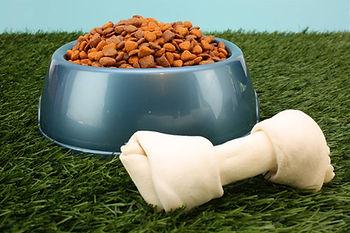 Pet food and dog bone
