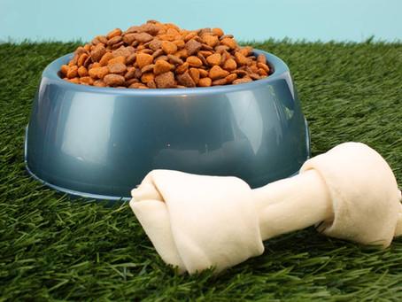 Salute e alimenti per cani e gatti