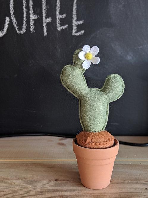 Funky Felt Cactus
