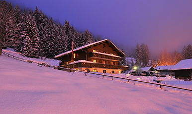 Cosy chalet with hot tub and sauna