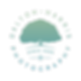 Primary Logo V.1.png