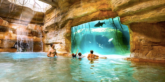 Family in a cave enjoying the tank view of sharks