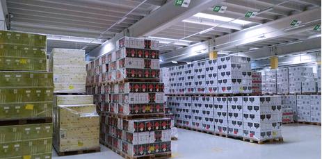Inside a fowarding warehouse