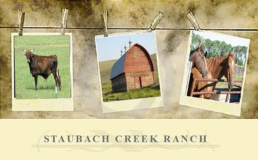 Montana Ranch and Guest House