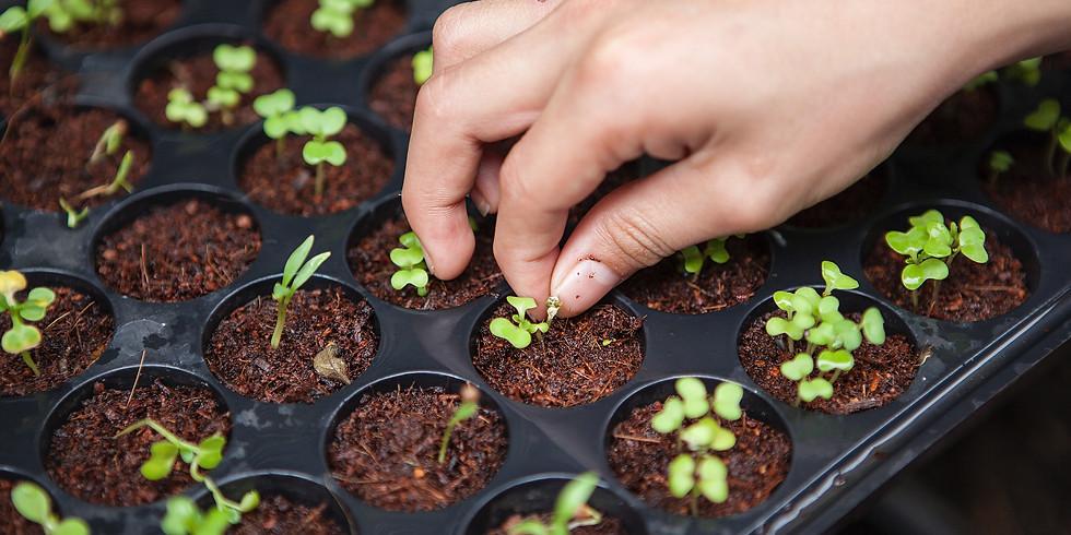 Zaaien en planten VOLZET