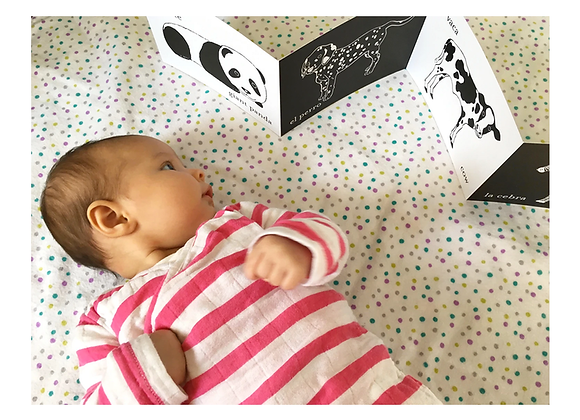 Tummy Time Accordion Cards for Baby