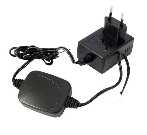 Chargeur de batterie 220 V