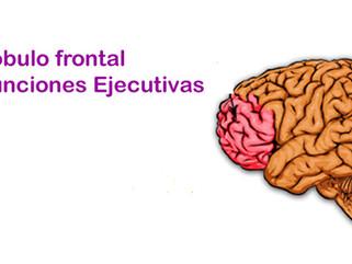 ENFE (Evaluación neuropsicológica de las funciones ejecutivas en niños)