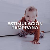 Estimulación-temprana.png