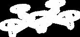 SH-Web_Icon-DRONE.png