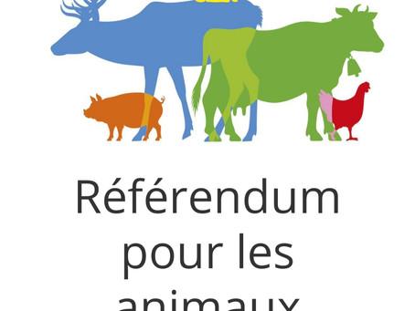 Référendum pour les animaux :