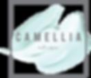 CA_LOGO_FILES_CROPPED_ARTBOARDS-01_205x_2x.png