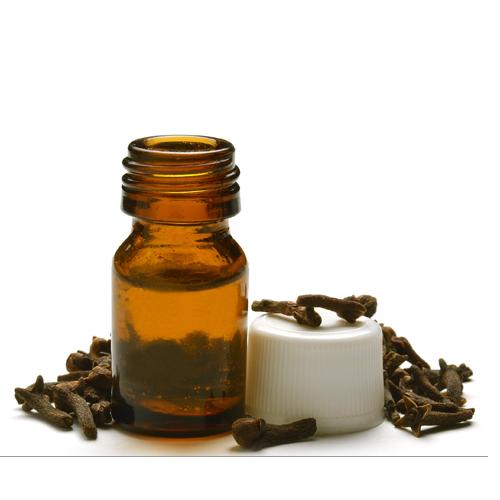 Essência de óleo de cravo
