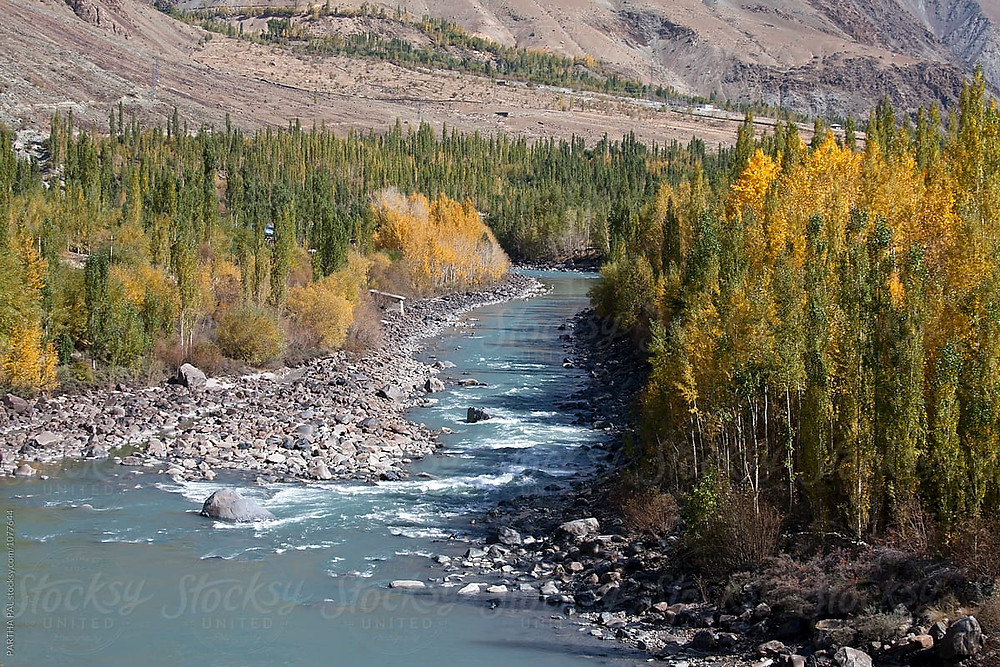 paisagem rio e floresta