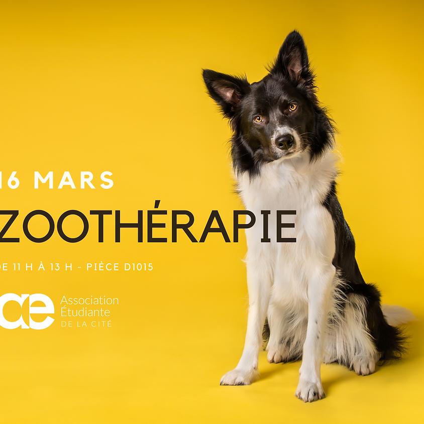 Zoothérapie de chiens