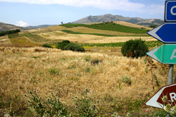 Fields, Segesta, Sicily