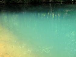 Pond, Crystal Bridges