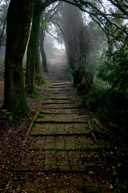 Steps, Corciano, Italy