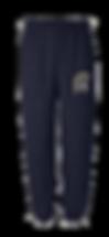 Raider pants.png