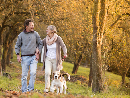 Auto Enrolment - Reaping the benefits of workplace pension savings