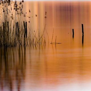 Piquets du lac au lever du soleil